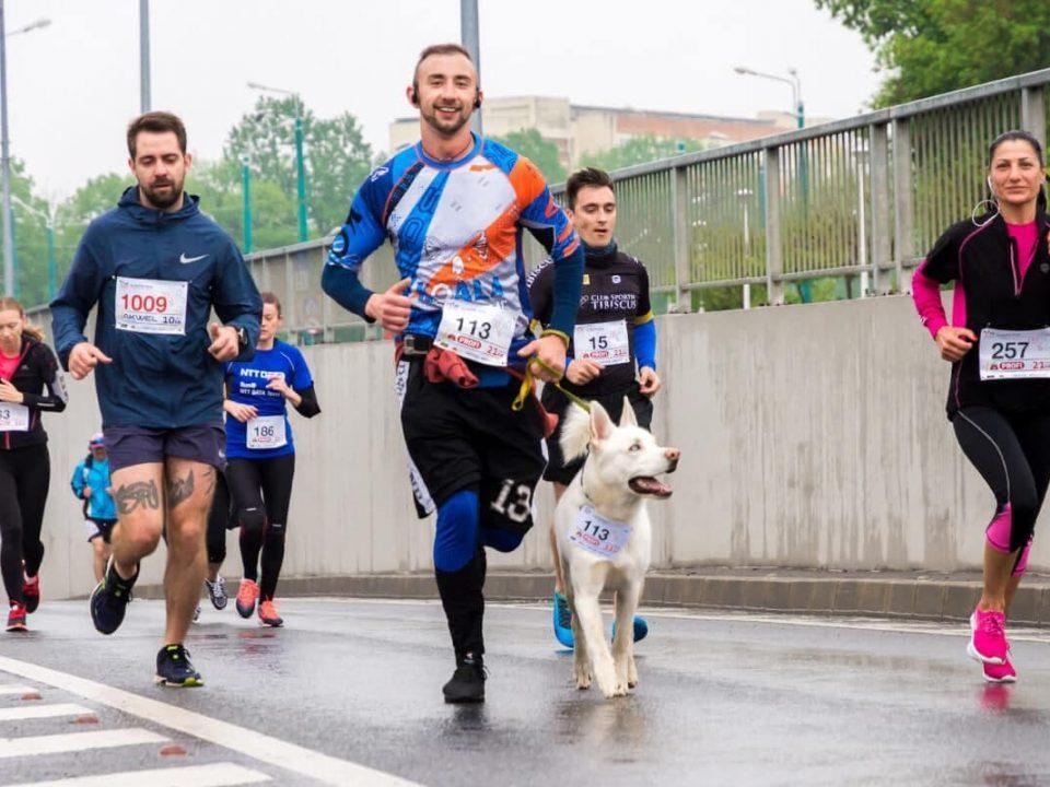 znane polskie maratony biegi sportowe